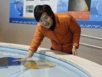 水族館は、レジャー施設か文化施設か?