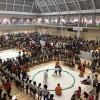 ライバルたちの動向も気になりますが、わんぱく相撲大会は大盛況!