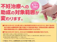 「産みたいけど産めない」人への支援をどうするか?-東京都の不妊治療助成-