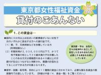 どこまでが「格差・不平等」で、どこからが「個性・独自色」なのか?-東京都女性福祉資金を例に-