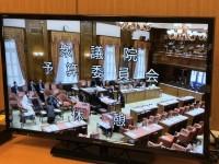 専門家が決死の告発、記者周辺も感染…国会は桜で、小泉大臣は新年会に出席か